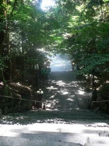 下りの石段